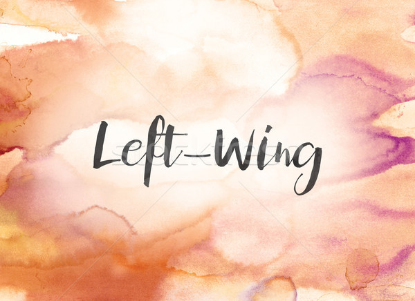 Left-Wing Concept Watercolor and Ink Painting Stock photo © enterlinedesign