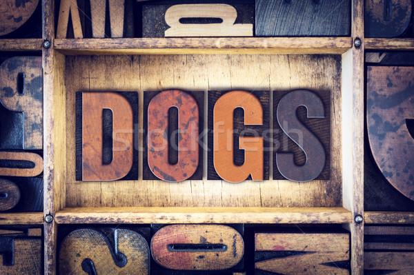 Dogs Concept Letterpress Type Stock photo © enterlinedesign