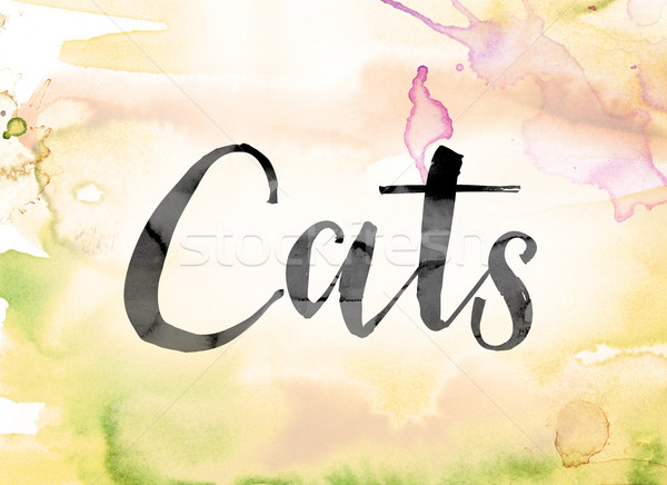Cats Colorful Watercolor and Ink Word Art Stock photo © enterlinedesign