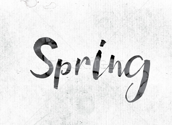 Spring Concept Painted in Ink Stock photo © enterlinedesign