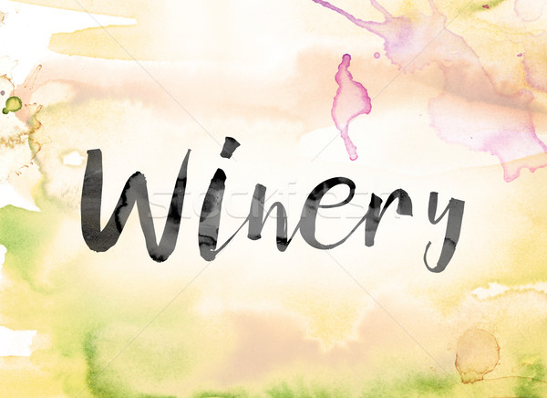 Winery coloré couleur pour aquarelle encre mot art Photo stock © enterlinedesign