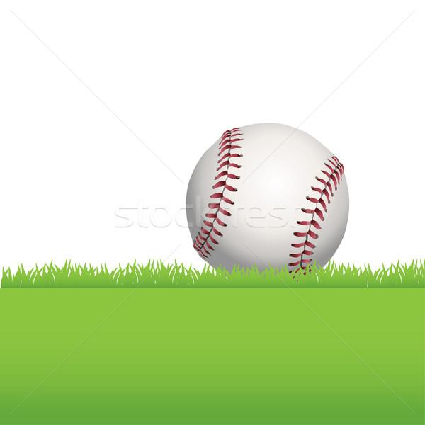 Baseball Sitting on Green Grass Illustration Stock photo © enterlinedesign