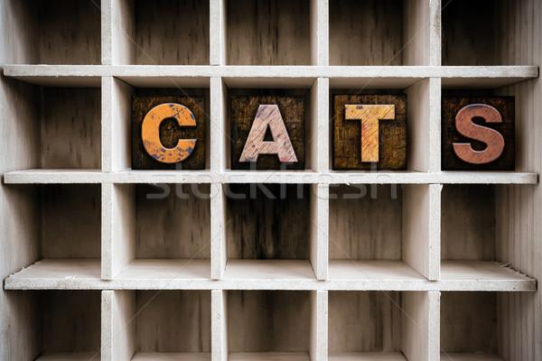Сток-фото: кошек · тип · обратить · слово