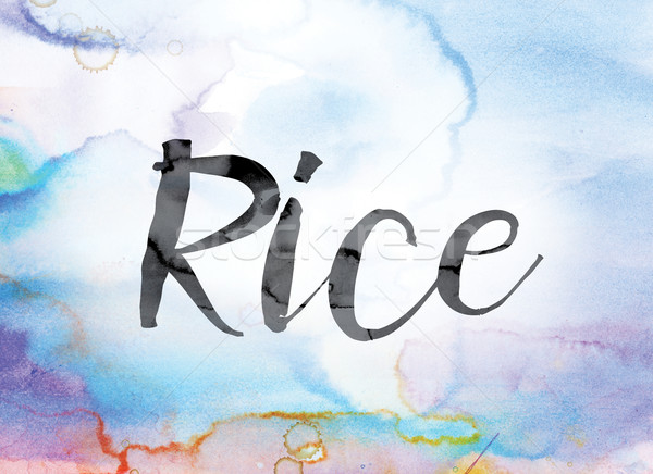Rice Colorful Watercolor and Ink Word Art Stock photo © enterlinedesign