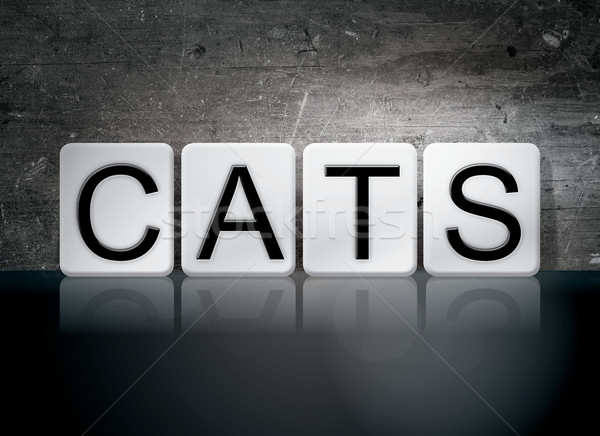 Cats Tiled Letters Concept and Theme Stock photo © enterlinedesign
