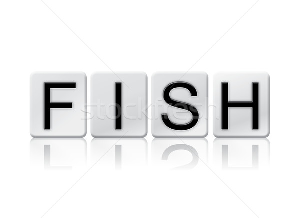 Fish Isolated Tiled Letters Concept and Theme Stock photo © enterlinedesign