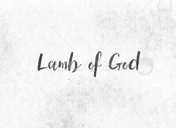 Lamb of God Concept Painted Ink Word and Theme Stock photo © enterlinedesign