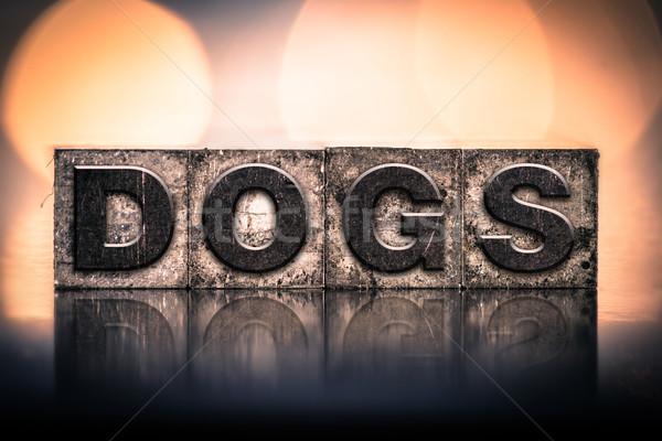 Dogs Concept Vintage Letterpress Type Stock photo © enterlinedesign