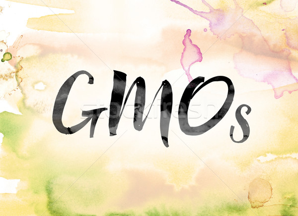 GMOs Colorful Watercolor and Ink Word Art Stock photo © enterlinedesign