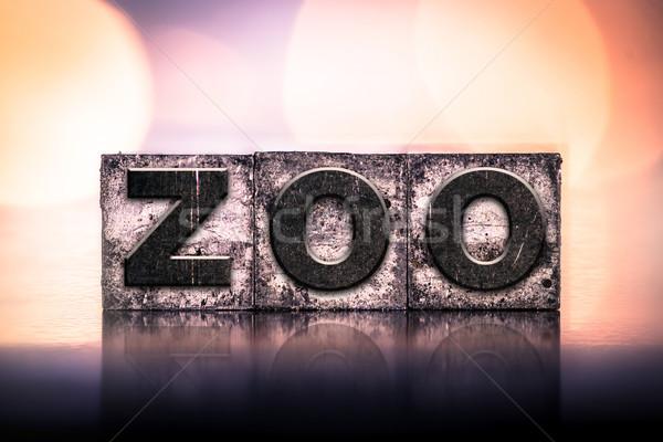 Hayvanat bahçesi bağbozumu tip kelime yazılı Stok fotoğraf © enterlinedesign