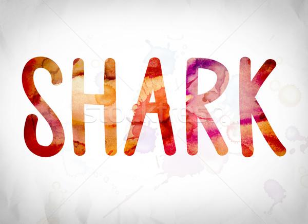 Shark Concept Watercolor Word Art Stock photo © enterlinedesign