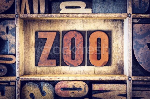 Zoológico tipo palabra escrito vintage Foto stock © enterlinedesign