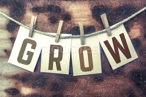 Grow Concept Pinned Stamped Cards on Twine Theme Stock photo © enterlinedesign