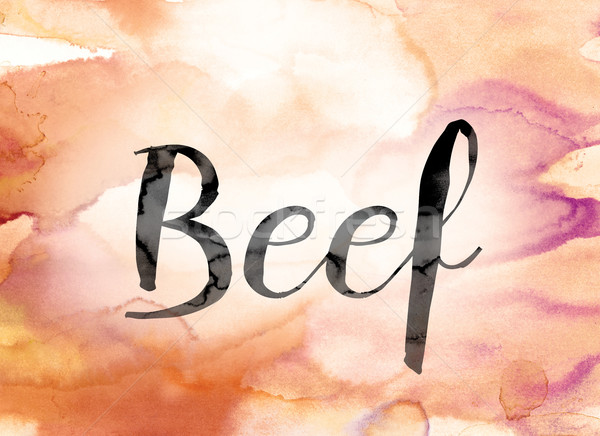 Beef Colorful Watercolor and Ink Word Art Stock photo © enterlinedesign