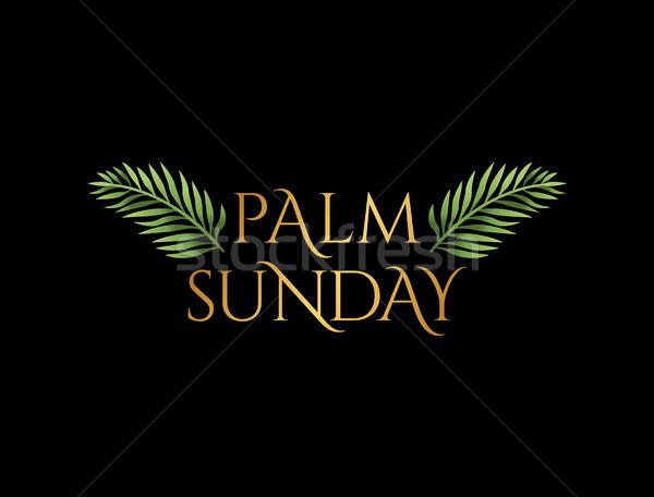 Domingo de ramos cristão férias ilustração religioso palma Foto stock © enterlinedesign