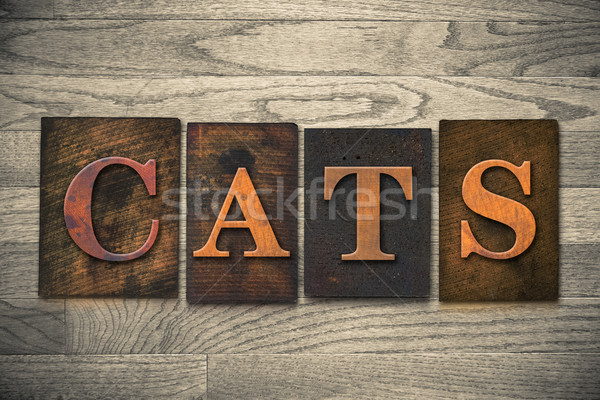 Cats Wooden Letterpress Theme Stock photo © enterlinedesign