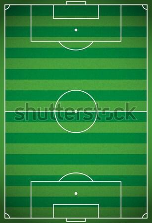 Vertical Realistic Football - Soccer Field Illustration Stock photo © enterlinedesign