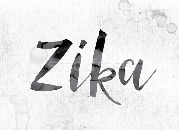 Zika Concept Painted in Ink Stock photo © enterlinedesign