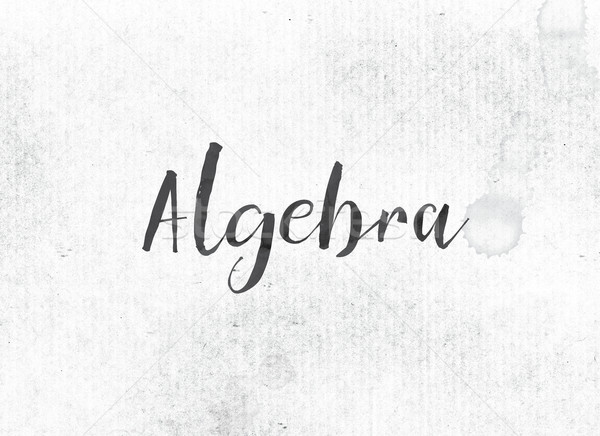 Algebra Concept Painted Ink Word and Theme Stock photo © enterlinedesign