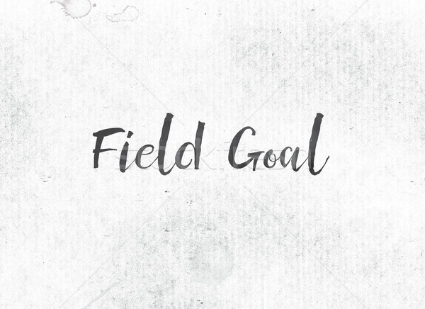 Field Goal Concept Painted Ink Word and Theme Stock photo © enterlinedesign