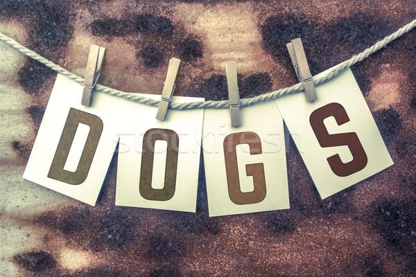 Kutyák kártyák zsinór szó öreg darab Stock fotó © enterlinedesign