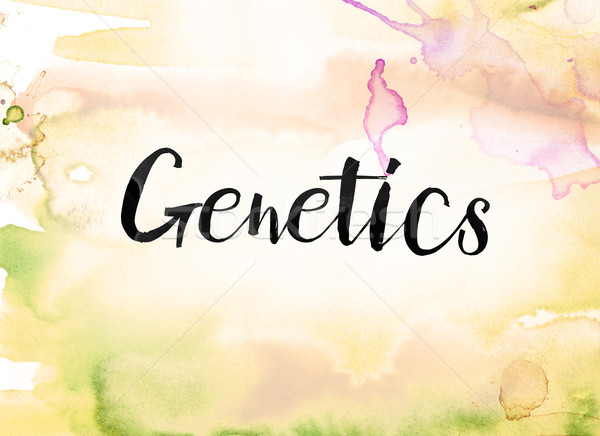 Genetics Concept Watercolor and Ink Painting Stock photo © enterlinedesign