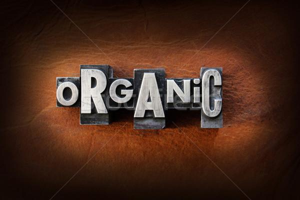 Orgânico palavra vintage tipo couro Foto stock © enterlinedesign