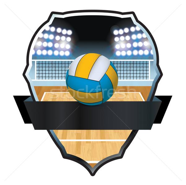 Volleybal rechter badge illustratie net embleem Stockfoto © enterlinedesign