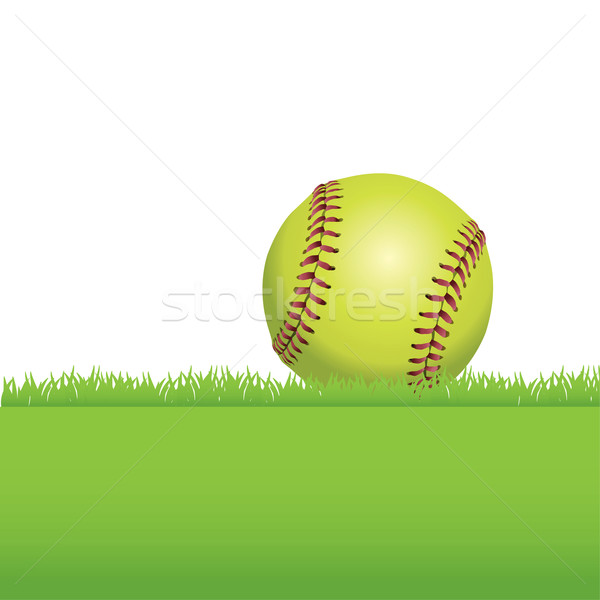 Softball séance herbe illustration réaliste herbe verte Photo stock © enterlinedesign