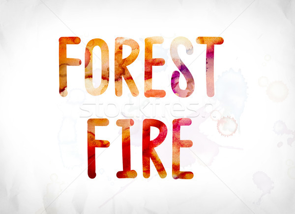 Forest Fire Concept Painted Watercolor Word Art Stock photo © enterlinedesign