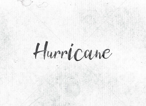 Hurricane Concept Painted Ink Word and Theme Stock photo © enterlinedesign