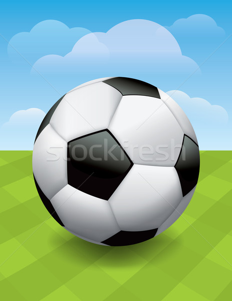 Soccer Ball on Green Soccer Pitch Stock photo © enterlinedesign
