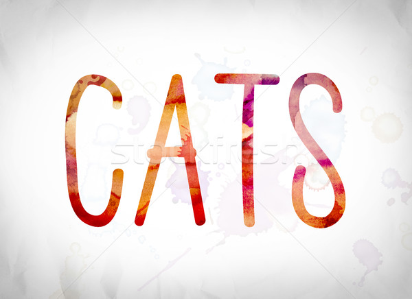 Cats Concept Watercolor Word Art Stock photo © enterlinedesign