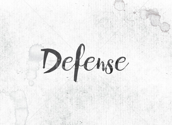 Defense Concept Painted Ink Word and Theme Stock photo © enterlinedesign