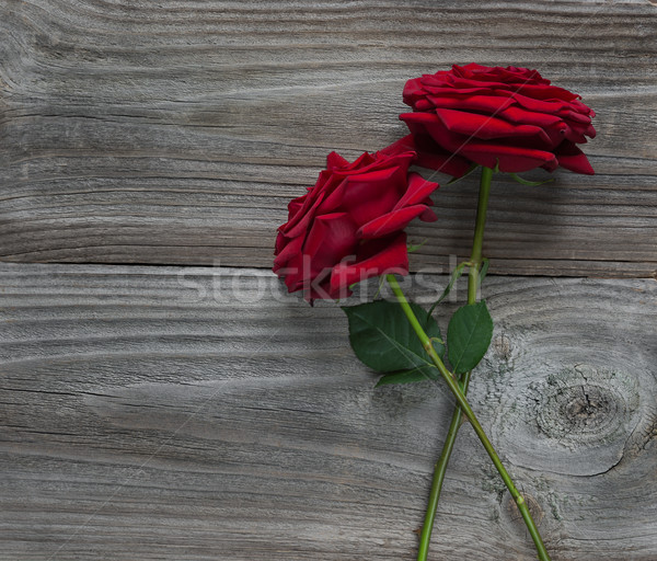 Stock photo: Two red roses on a wooden background