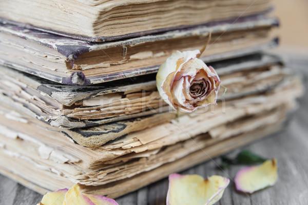 Natürmort retro tarzı eski kitaplar kurutulmuş Stok fotoğraf © Epitavi