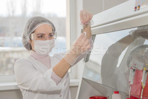 Woman scientist in a lab Stock photo © Epitavi