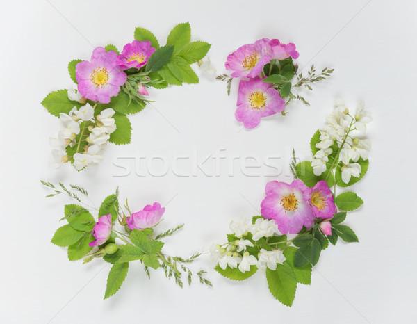 Decorative composition with wild rose flowers Stock photo © Epitavi