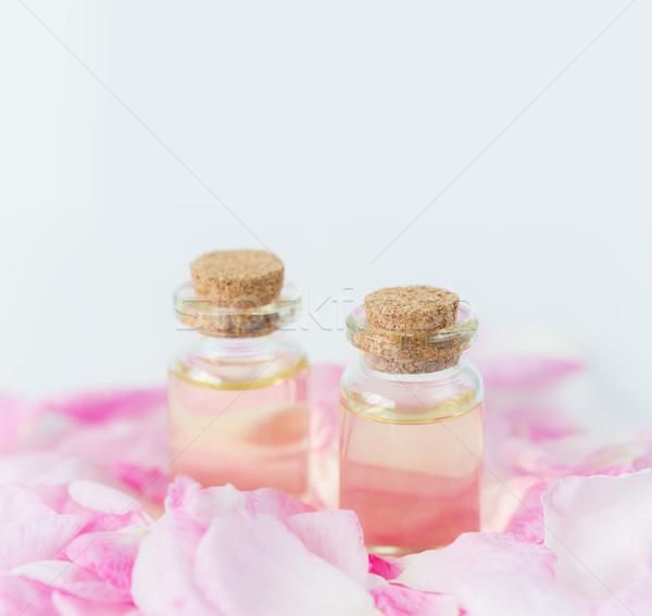 Steeg twee bloemblaadjes roze rozen Stockfoto © Epitavi