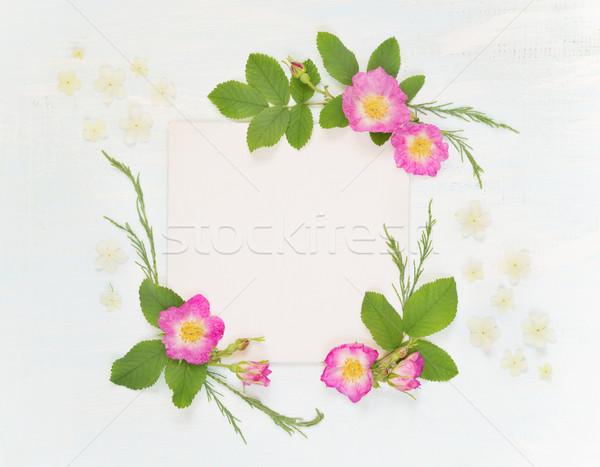 Recados página rosas flores brancas casamento Foto stock © Epitavi