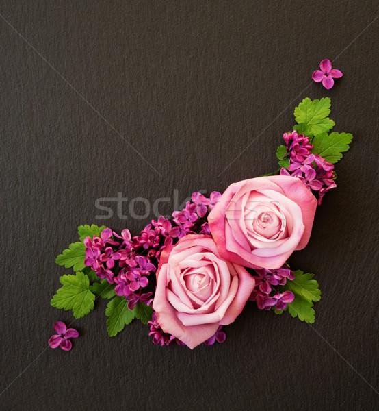 ストックフォト: 装飾的な · 花 · ピンク · バラ · バイオレット · ライラック
