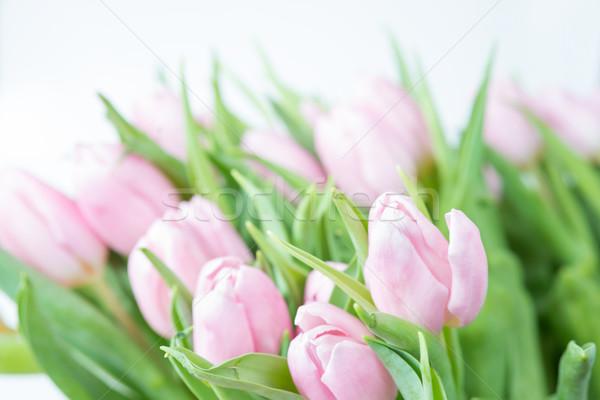 Stok fotoğraf: Pembe · lale · çiçekler · buket · taze · ışık