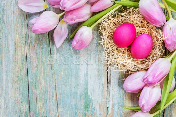 Paskalya lale yumurta pembe iki Stok fotoğraf © Epitavi