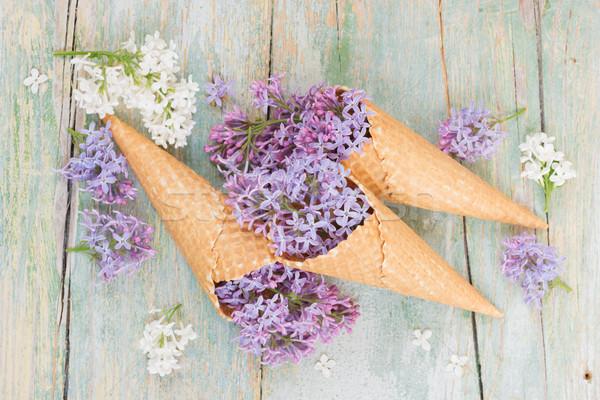 紫色 ライラック ワッフル 春 静物 花 ストックフォト © Epitavi