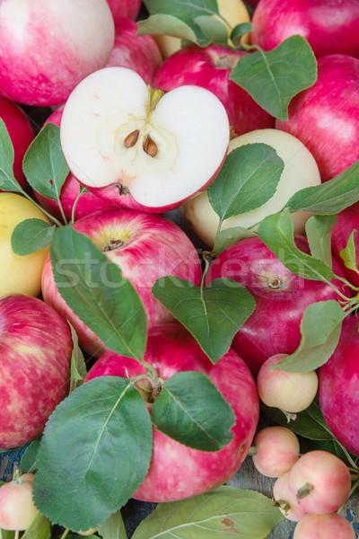 Viele rot Äpfel grüne Blätter Hälfte Apfel Stock foto © Epitavi