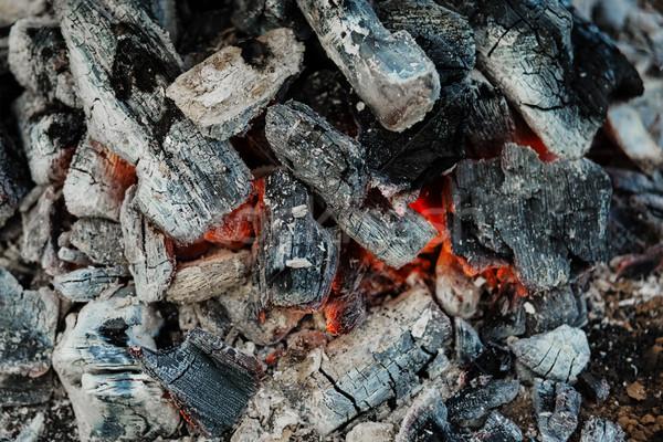 Coals in the fire Stock photo © Epitavi