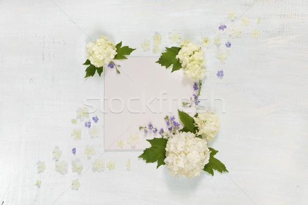Album na wycinki strona biały niebieski kwiaty ślub Zdjęcia stock © Epitavi