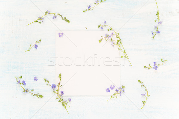 Scrapbooking page with blue flowers Stock photo © Epitavi