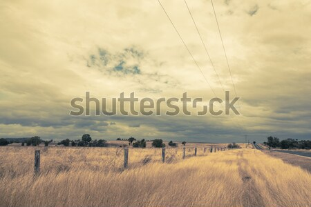 Outback Landscape Stock photo © epstock