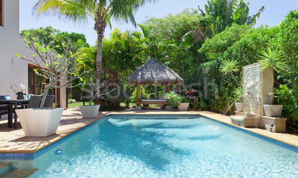 Backyard with swimming pool Stock photo © epstock